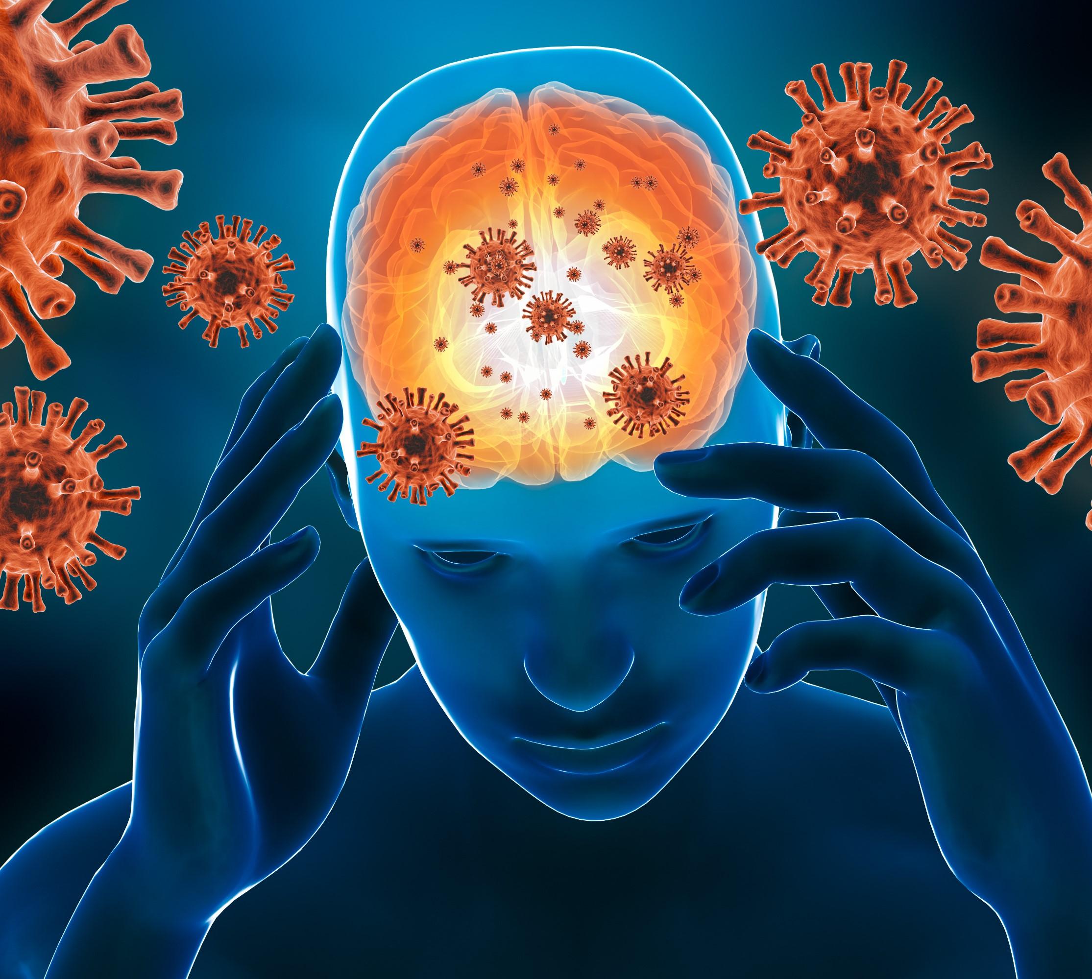 Meningite atuando no cérebro humano